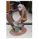 """Early Taxidermy """"Monkey"""""""