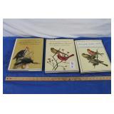 3 - J.F Landsdowne Art Books