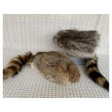 Coonskin Caps (size small & large)