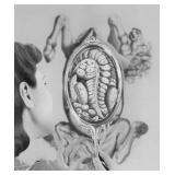 77) On Narcissism - 46 X 55 Surreal Artwork: LE, S