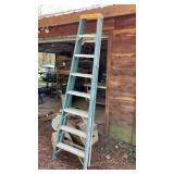 "8"" Werner Fiberglass Ladder"