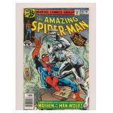 MARVEL COMICS AMAZING SPIDER-MAN #190 BRONZE AGE