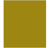 Inti de Oro (Castellana) avatar