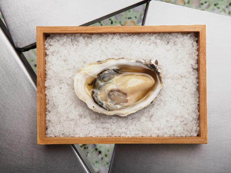 ostras | soja blanca