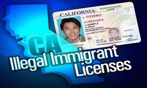ca_illegal_licenses