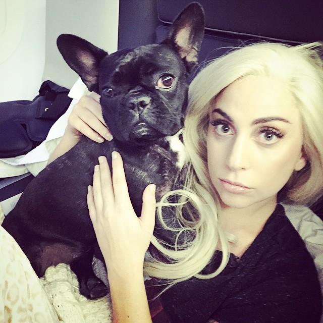 lady-gaga-instagram-artpop-taylor-kinney-15