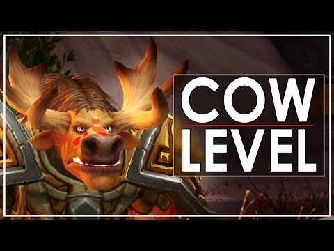 World Of Warcraft walkthrough video.