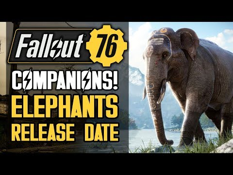 Fallout 76 - Irradiated Elephants!  Companions!  Release Date Leaks and Rumors!