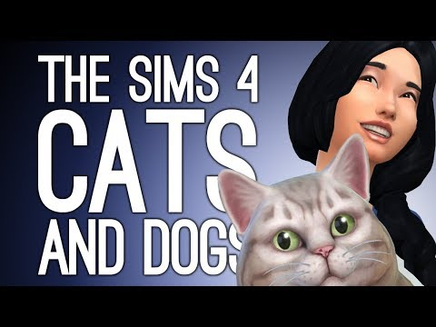 Sims 4 Cats and Dogs Xbox One: CRAZY CAT LADY CAT CAFE HOME MAKEOVER 😻