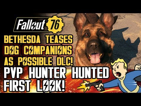 Fallout 76 - Bethesda Teases Dogs as Possible DLC! Hunter Hunted PVP First Gameplay!
