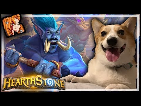 The GREATEST Board Clear In HISTORY! Ft. Corgi Cuteness - Rastakhan's Rumble Hearthstone