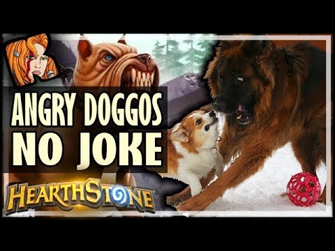 Team Angry Doggo Is No Joke - Hearthstone