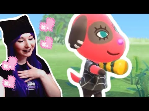 NEW CONTENT! MY HEART! - Animal Crossing: New Horizons Direct 2.20.2020 LIVE REACTION VIDEO