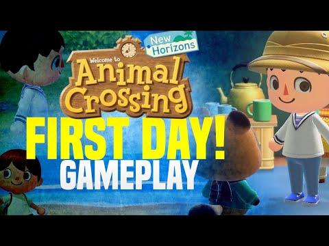 My Island Setup! NEW Animal Crossing New Horizons Gameplay | DAY ONE