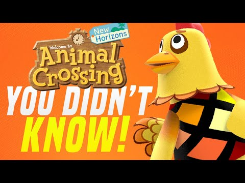 Animal Crossing 10 THINGS YOU DIDN'T KNOW in New Horizons! (Animal Crossing Tips)