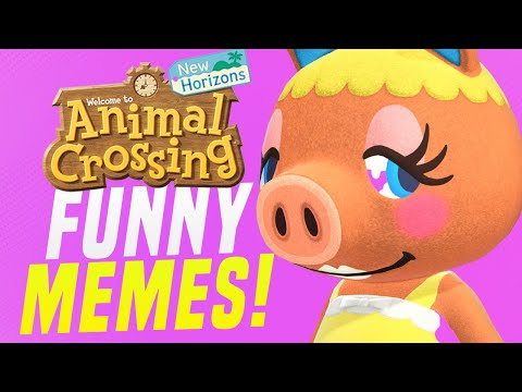 HILARIOUS Animal Crossing Memes from New Horizons!  (Animal Crossing Tips)