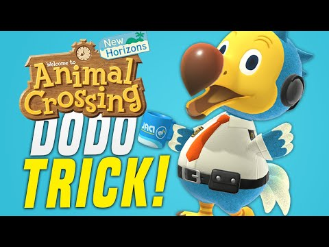 HIDDEN Feature in Animal Crossing New Horizons W/ Dodo Airlines Trick! (Animal Crossing Tips)