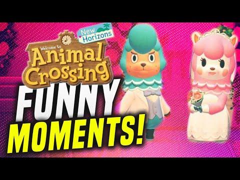Animal Crossing Wedding GONE WRONG in New Horizons!