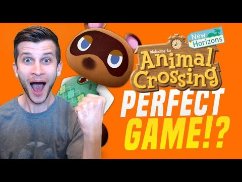 Animal Crossing Changed My Life (Nintendo Switch Tribute)