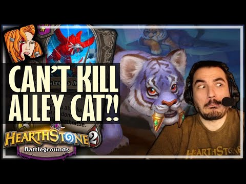THE INVINCIBLE ALLEY CAT! - Hearthstone Battlegrounds