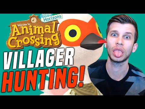 NEW VILLAGER HUNTING NOW! Animal Crossing New Features and NEW Islands! (New Horizons Tips!)