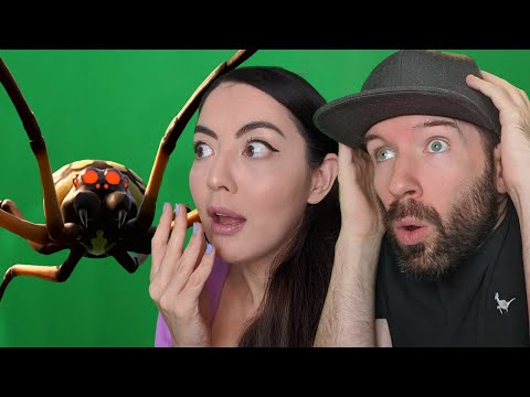 Grounded Spider Hunt Challenge! Who Can Kill the Spider? Andy vs Jane vs Giant Spider