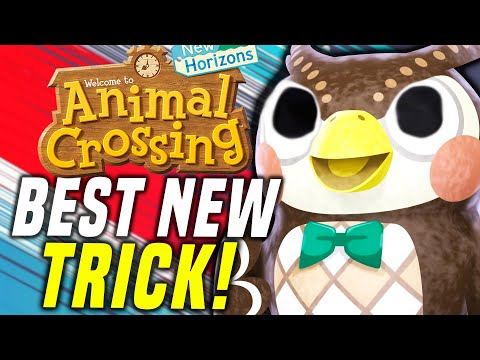 USE THIS GLITCH FAST!! New Animal Crossing Update TRICKS AND TIPS! (New Horizons Gameplay)