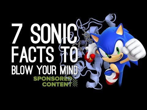 7 Mindblowing Sonic The Hedgehog Facts to Share at Your Next Dinner Party (Sponsored Content)