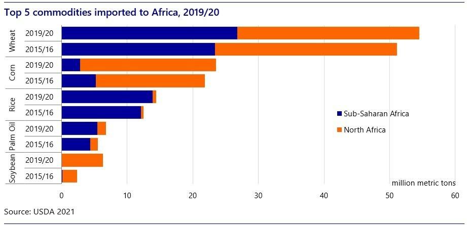 Top-5-Commodities.jpg#asset:233510