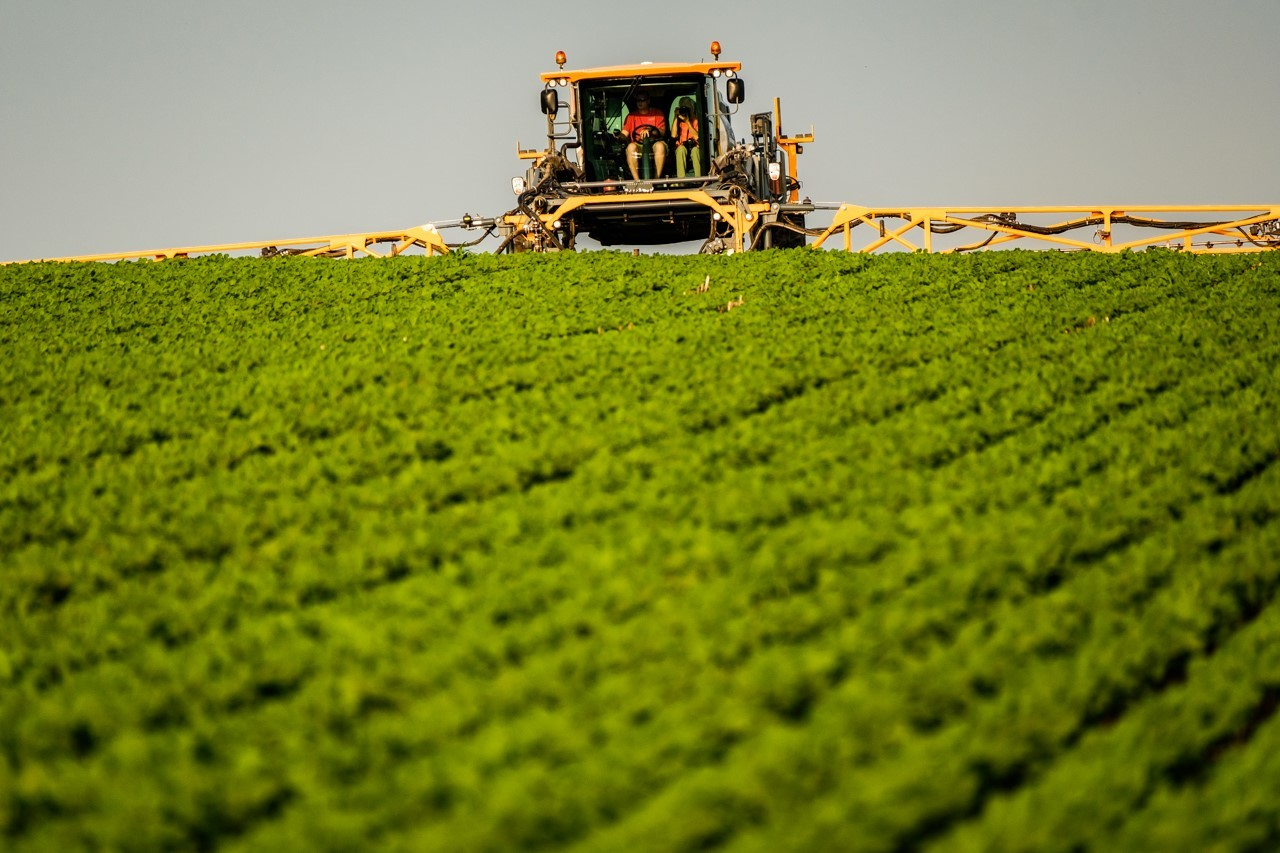 BASF's Revysol Fungicide Receives EPA Registration   Seed Today