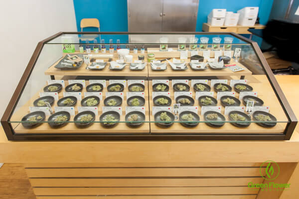 Harborside Health Center dispensary display case