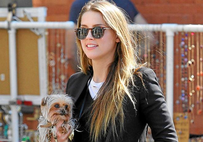 Amber Heard donará el dinero a una ONG- Gregorio Martínez.