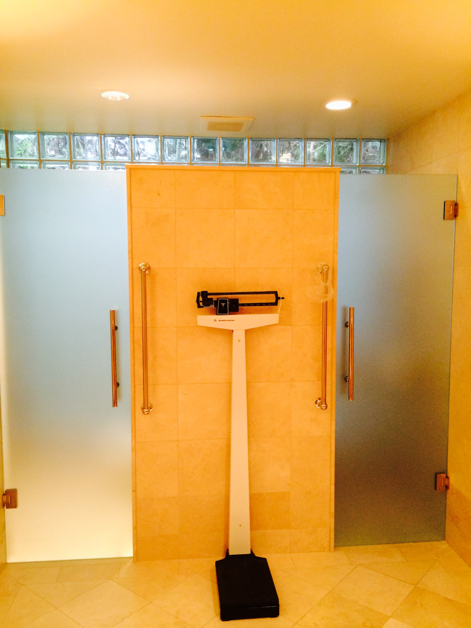 Frameless+shower++toilet+door+with+satin+etch