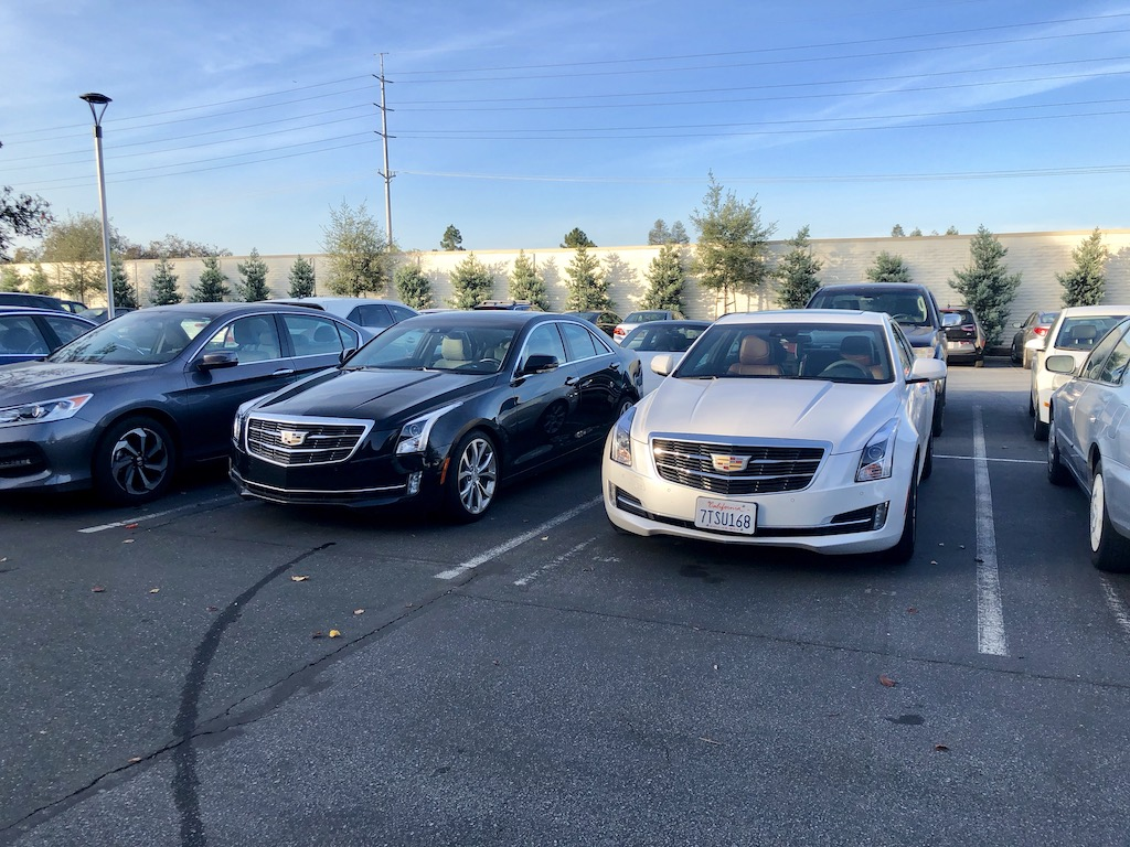 My Cadillac ATS (white) parked next to a co-worker's ATS.