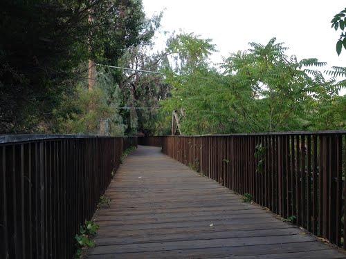 Lexington-Reservoir-Los-Gatos-Bridge.jpg