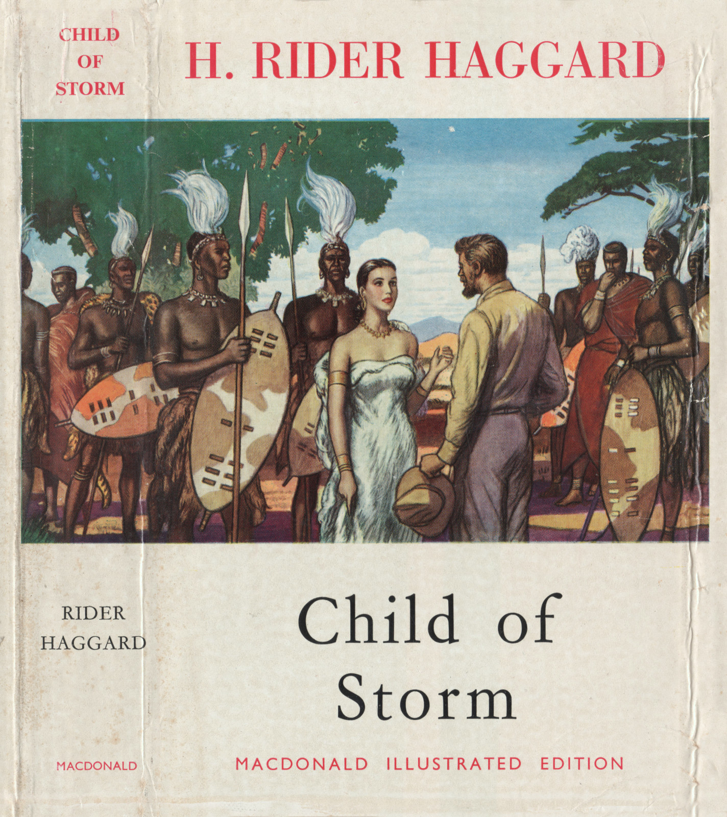 Childofstormmacdonalddustjacket