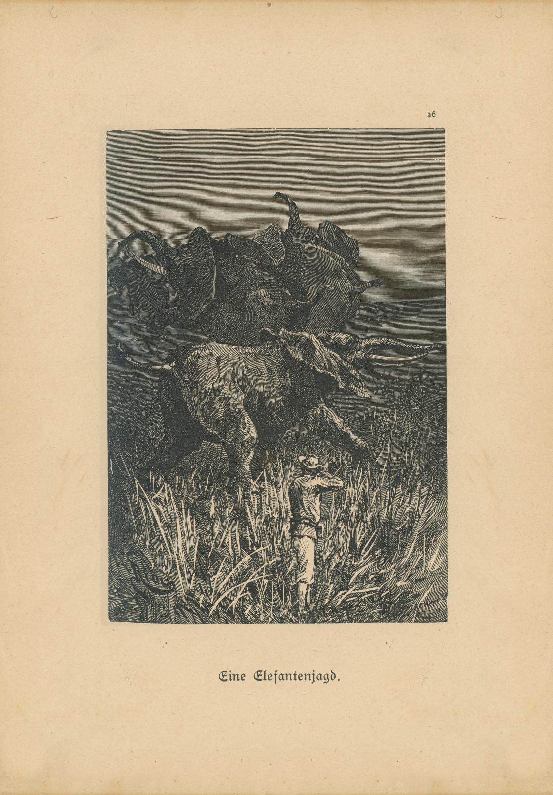 Eineelefantenjagddiamantminenvonafrika36