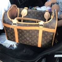 Louis Vuitton Pet Carrier