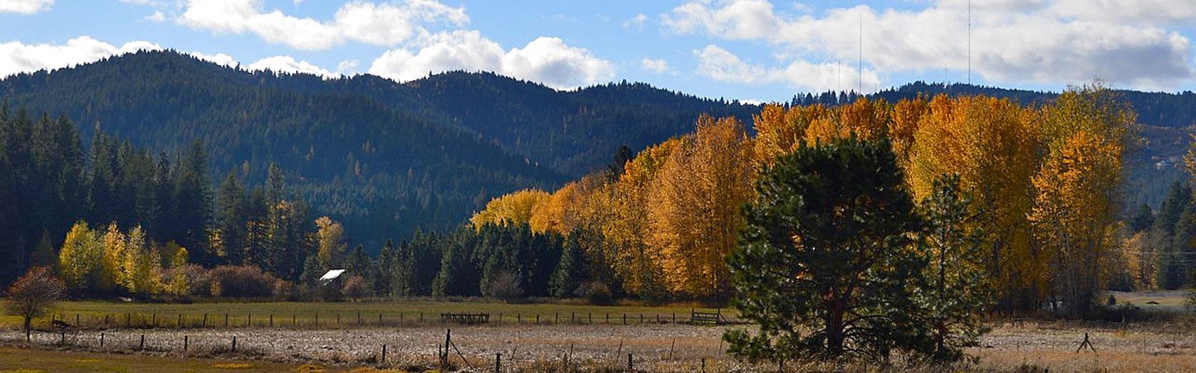 SPOKANE VALLEY  Spokane Area