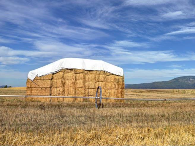 New homes in Post Falls Idaho