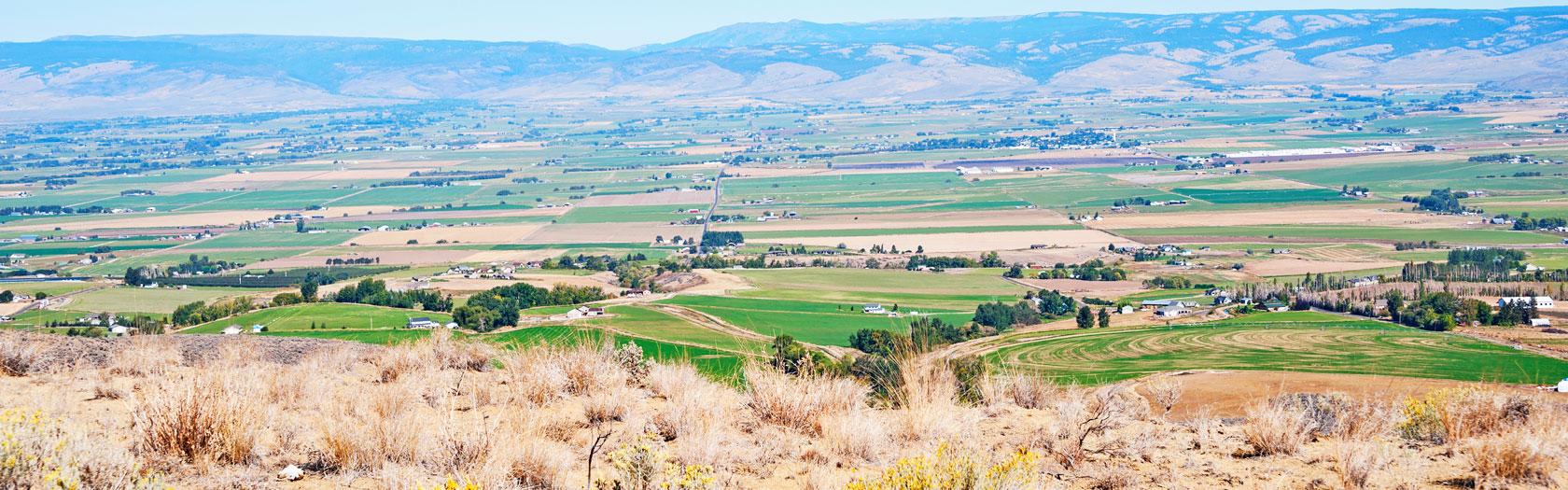 YAKIMA RIDGE  Yakima