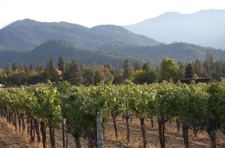 Berkeley Hills by Hayden Homes