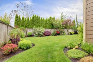 Lush Gardens for your backyard