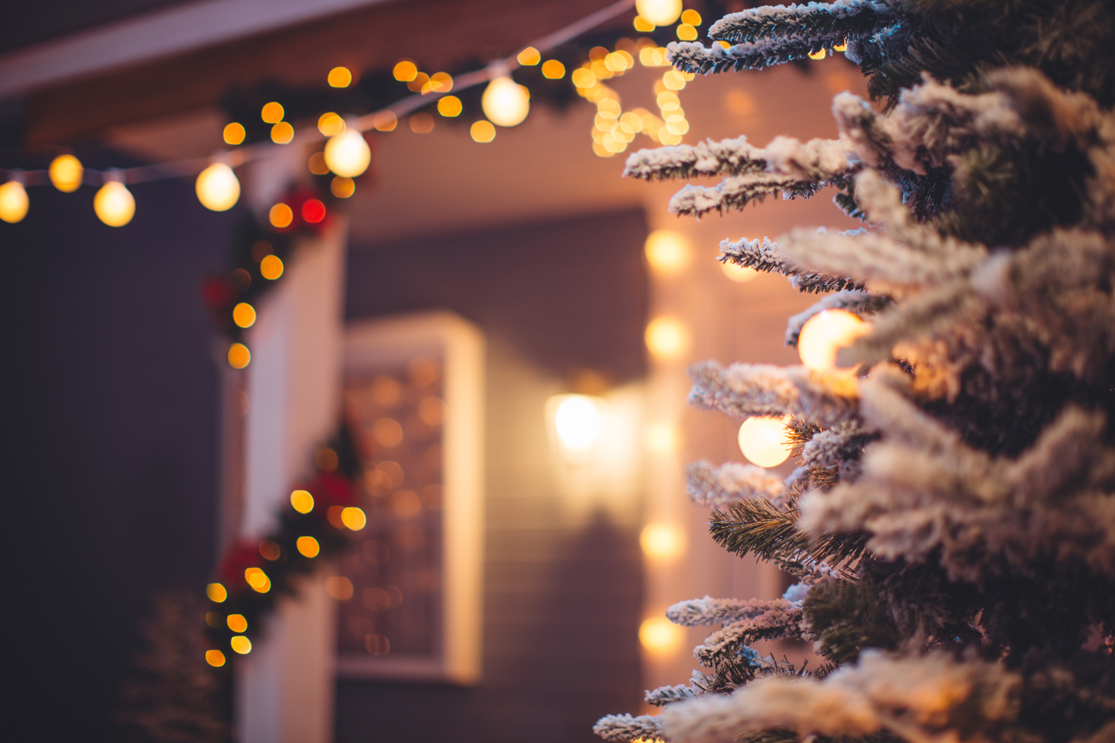Holiday Tips And Tricks Hayden Homes