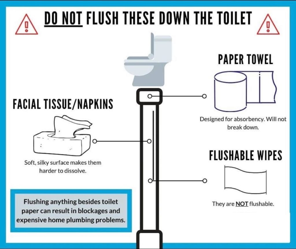 City Note – only toilet paper should be flushed
