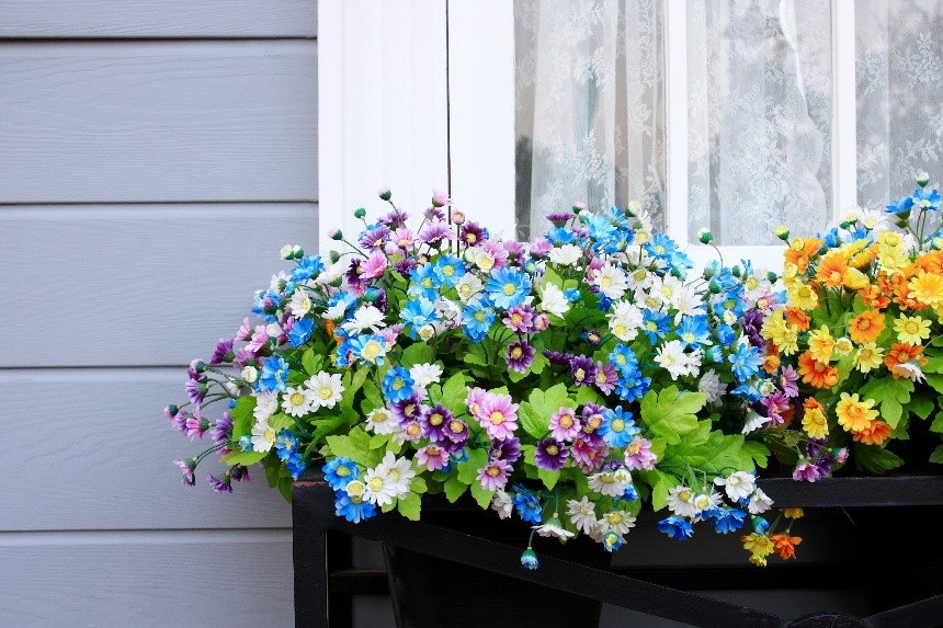 Tips for decorating window boxes