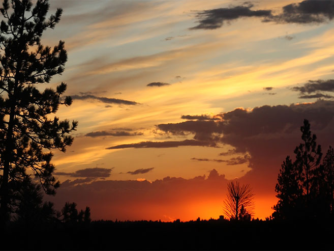 View of North Court at Sunset a New Home Community in Spokane WA by Hayden Homes