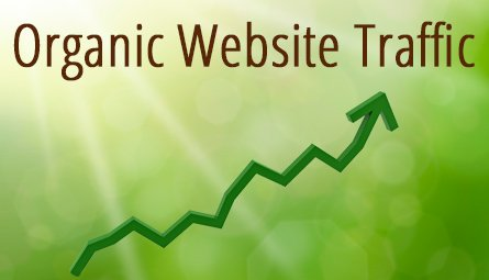 what-is-organic-traffic