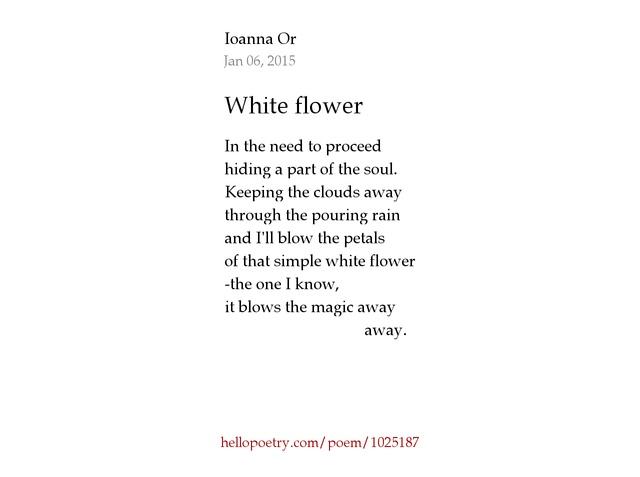 White flower by fsuiominn hello poetry mightylinksfo