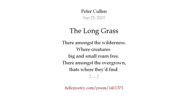 The Long Grass by Peter Cullen — Hello Poetry